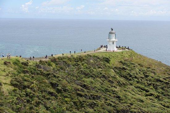 North Island, Yeni Zelanda: Lighthouse