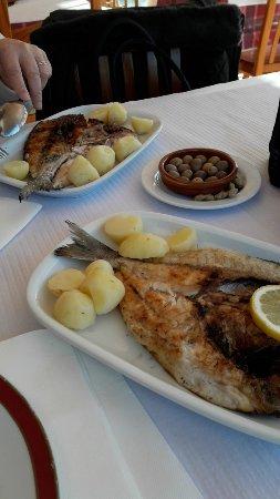 Alcacer do Sal, Portugal: Comida bem confecionada  com qualidade  muito bom gente simpática  gostei