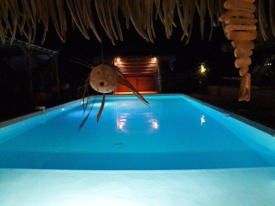 Grand Bourg, Guadeloupe: la vue splendide sur la piscine dont la clientèle peut disposer !