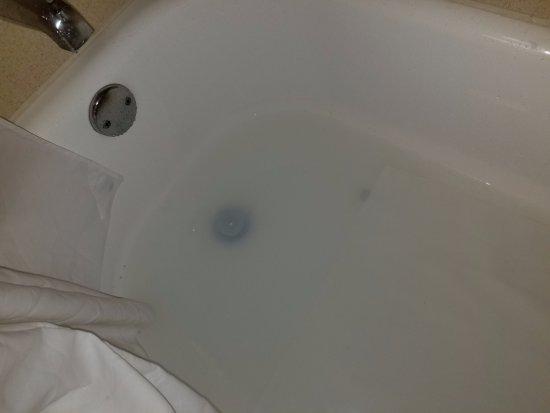 Hampton Inn Suites Valdosta Conference Center: Bathtub backing up