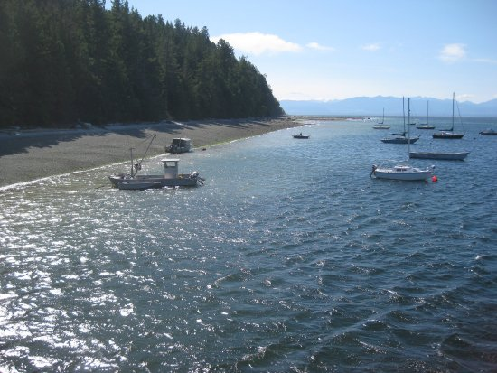Mansons Landing, Canada: View from wharf at Manson's Landing.