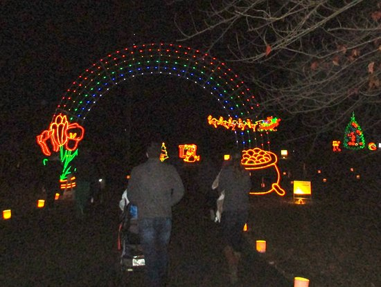 Light Display Picture Of Huntsville Botanical Garden