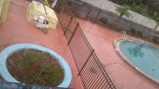 This is the actual picture of the pool at 1401 Atlantic Blvd, Neptune Beach, FL 32266