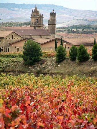 Elciego, Spania: Bodegas Murua y Viñedos