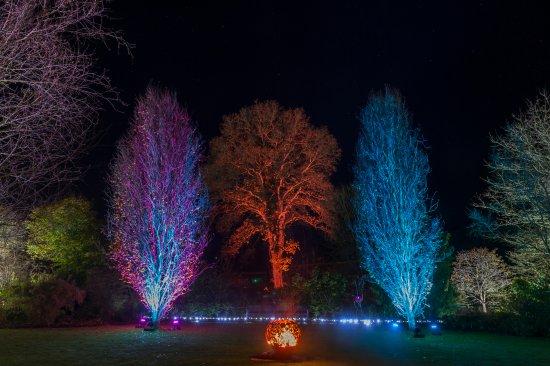 Great Torrington, UK: GLOW Illuminations4