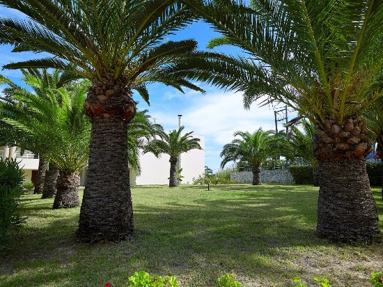 Landscape - Picture of Eleftheria Hotel, Crete - Tripadvisor