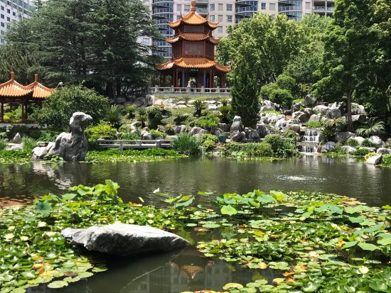 photo5.jpg - Picture of Chinese Garden of Friendship, Sydney ...