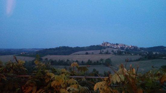 Vignale Monferrato, İtalya: vista dalla sala da pranzo
