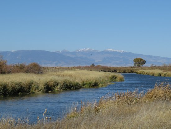 Alamosa, CO: View from walking trail
