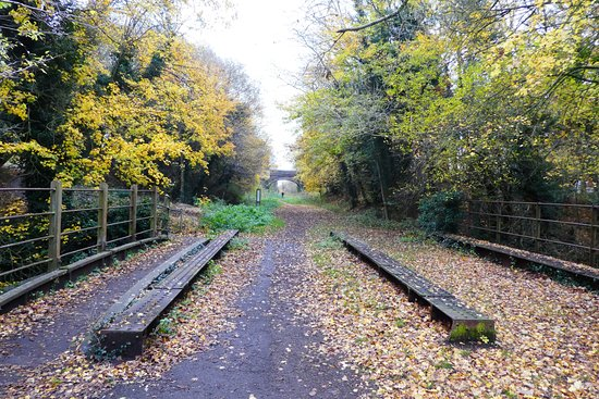 Clare, UK: The old railway line in direction of Sudbury.