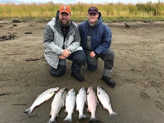 King Salmon Photo
