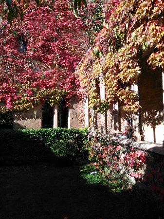 Palacio Real de Olite: IMG_20171105_135239_large.jpg