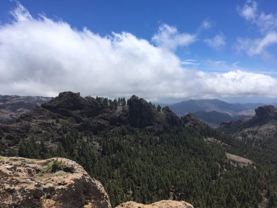 Lobos Island Photo