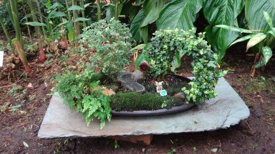 Matthaei Botanical Gardens Photo