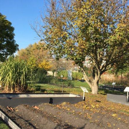 Jardin botanique de bordeaux frankrike omd men for Jardin botanique bordeaux