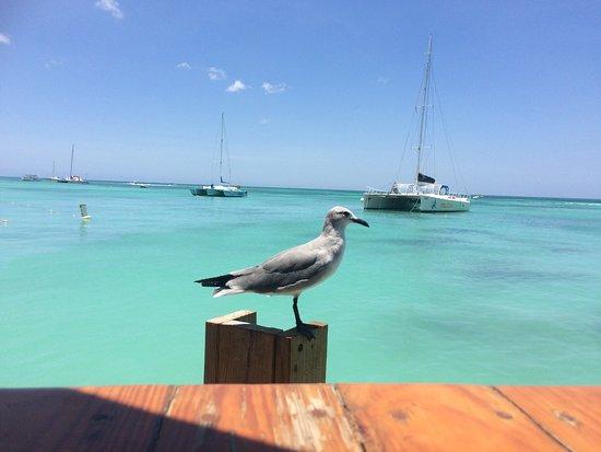 Bugaloe Beach Bar & Grill: photo0.jpg