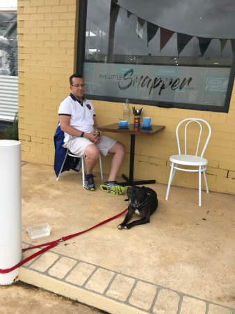 Culburra Beach, Australia: Dog friendly & good food = perfect