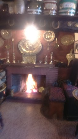 Dinas Mawddwy, UK: front bar with wood fire