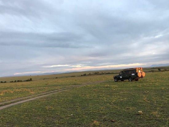 Mara Bush Camp : photo6.jpg