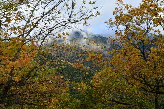 Ano Chora, Grecia: Φύση ορεινής Ναυπακτίας