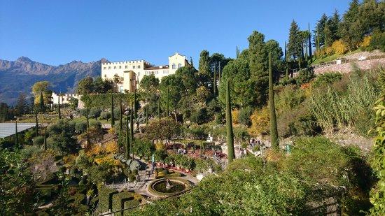 Blick auf Gartenanlagen und Teich - Bild von Gärten von ...