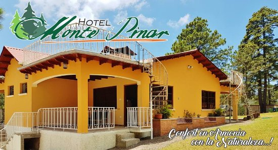 Hotel monte pinar prices specialty hotel reviews la for Specialty hotels