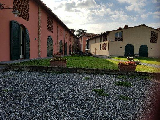 Palaia, Italy: IMG-20171119-WA0024_large.jpg
