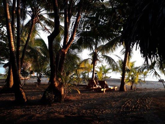 Fenix Hotel - On The Beach ภาพ