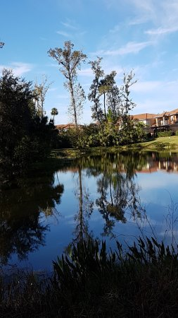 The small lake at the rear of our villa.
