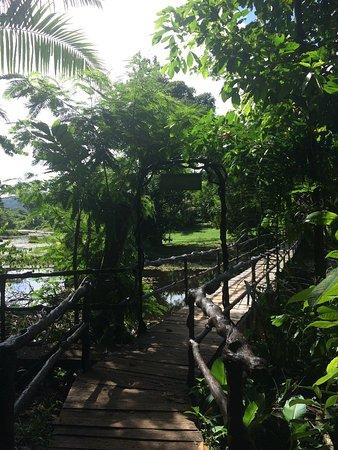 Boca Tapada, Costa Rica: IMG_1709_large.jpg