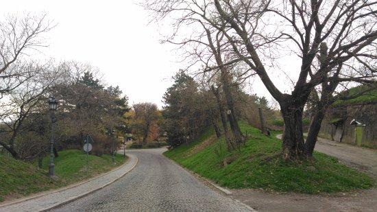 Petrovaradin, Srbija: P_۲۰۱۷۱۱۲۱_۱۱۲۱۵۲_large.jpg