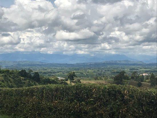 Bosques Del Saman - Alcala: photo5.jpg