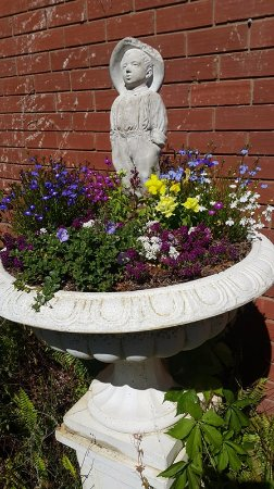 Chiltern, Australia: Many flowers are blooming in our Teahouse Gardens, great place to enjoy a tea or coffee with a s