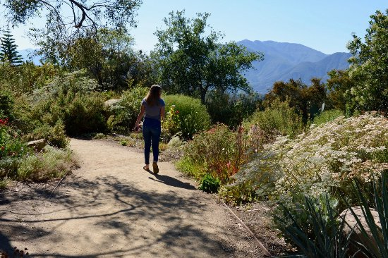 Ojai, CA: Walking the path to the view.