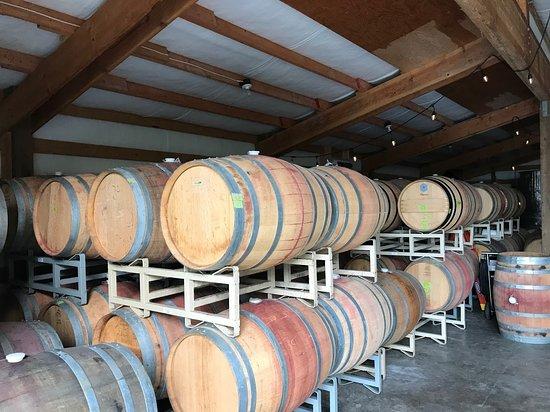 Bainbridge Island, WA: Rolling Bay Winery