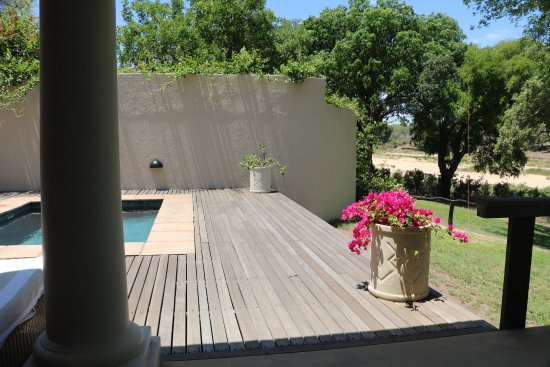 Mala Mala Private Game Reserve, Sudáfrica: Our private dip pool with view of Sand river