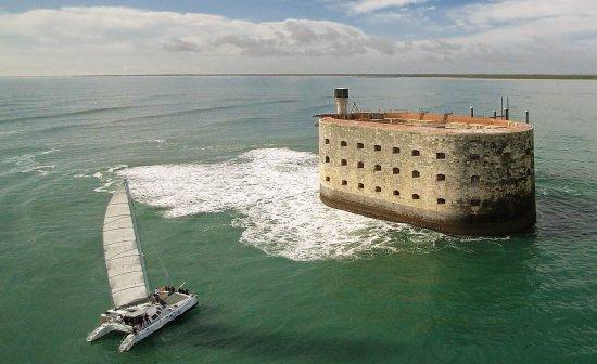 Ile ou Aile Catamaran