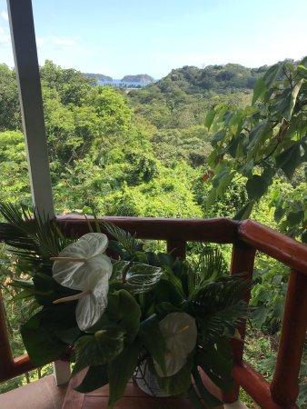 Lodge Las Ranas: photo1.jpg