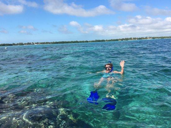 Casa Paraiso: Snorkeling offshore