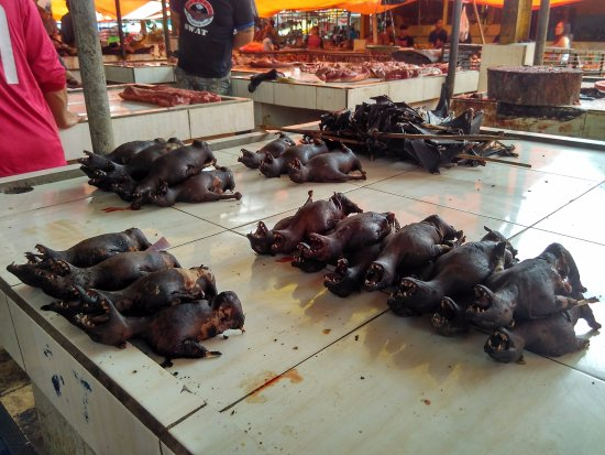 Tomohon, إندونيسيا: Kelelawar yang sudah dibakar