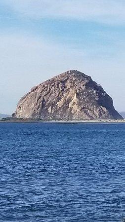 Morro Bay, CA: 20171121_134029_large.jpg