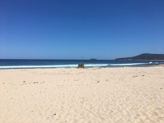 Shoalhaven, Australia: photo2.jpg
