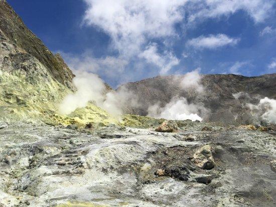 Whakatane, New Zealand: photo3.jpg