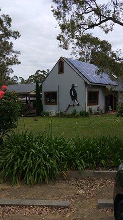 Lovedale, Австралия: IMG20171122091343_large.jpg