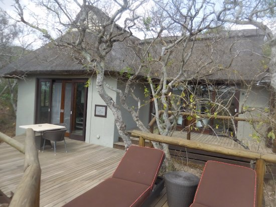 Phinda Private Game Reserve, South Africa: Chalet patio