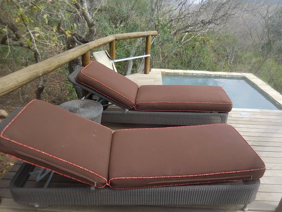 Phinda Private Game Reserve, South Africa: Outdoor plunge pool