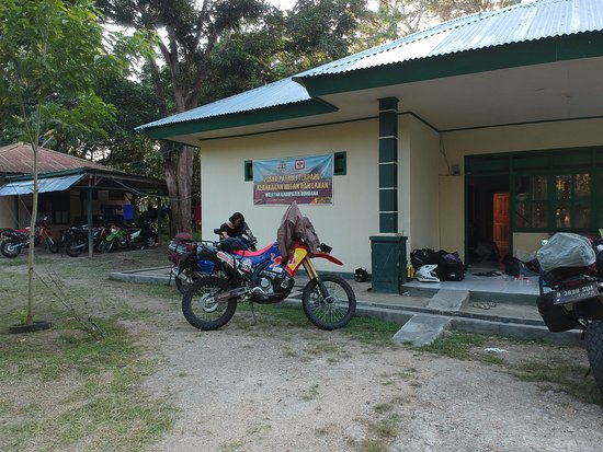 South East Sulawesi, Indonezja: The guesthouse