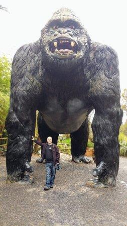 Wookey Hole, UK: 20171121_122642~2_large.jpg