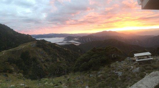 Westport, Nuova Zelanda: photo4.jpg
