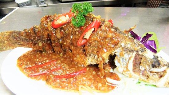 Hope Island, Australie : Whole barramundi deep fried served with chili sauce.